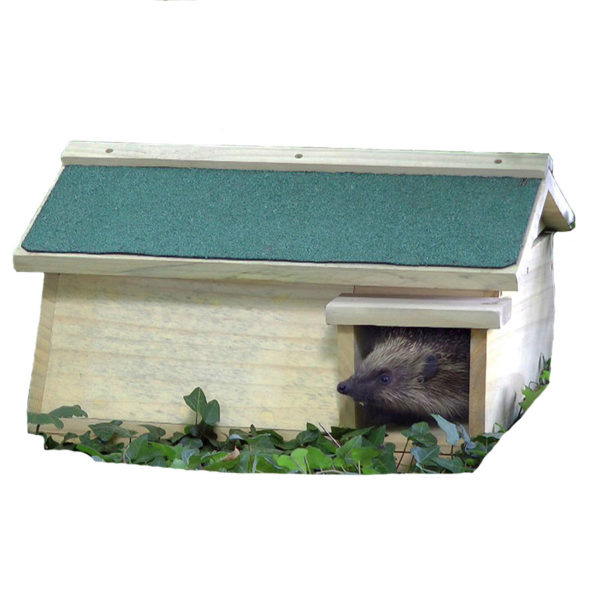 Hedgehog Habitat