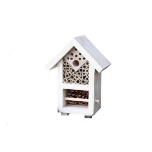 Insect and Bee House