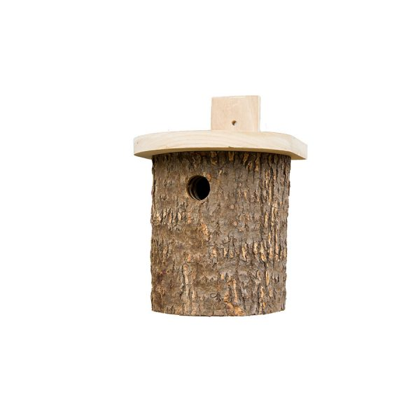 Natural Log Tit Box