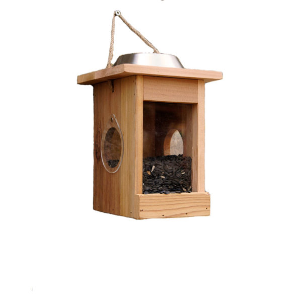 Unique Bird Feeder