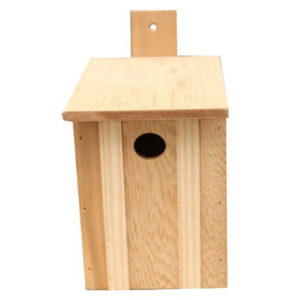 Value Camera Nest Box
