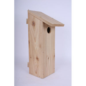 Woodpecker Box