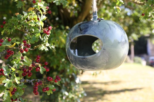 Apple Pod Bird Feeder