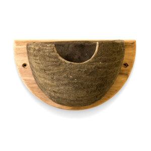 House martin nesting bowl