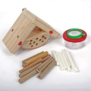 Childrens Bug Box Kit