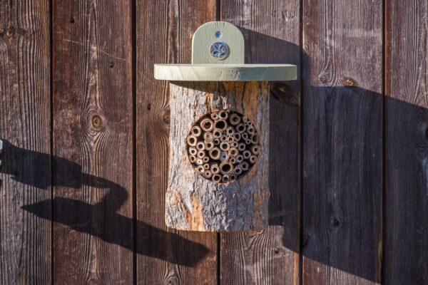 Natural Bee Log